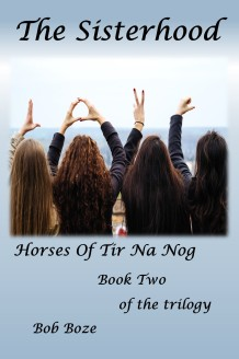 Front Cover HTNN BK2 final ebook